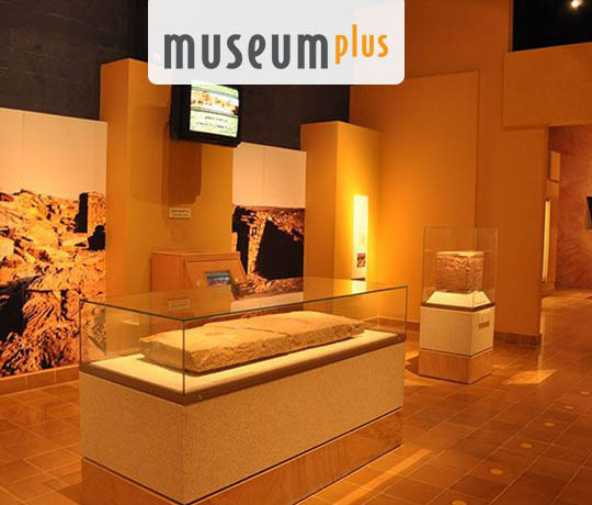 Museum Management Solutions