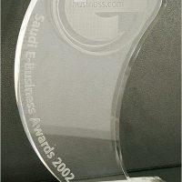 Saudi E-Business Awards 2002 from Business.com