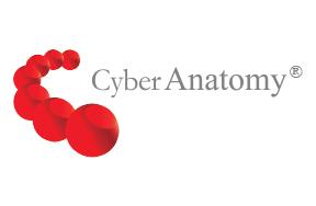 Cyber-Anatomy