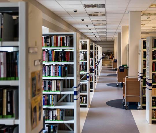 Cataloging & Shelf Ready Services
